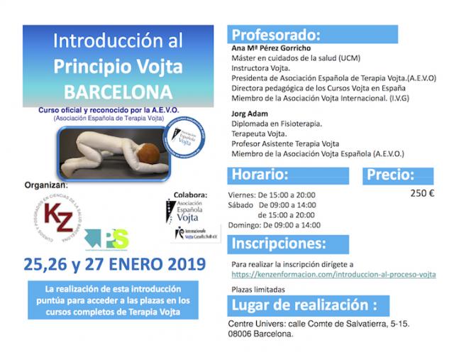 Curso Introducción al Proceso Vojta Barcelona